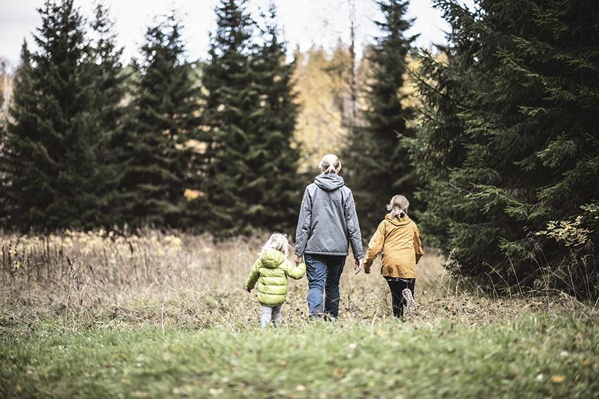 Generationsskifte gård och skog